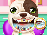 Crazy Animals Dentist